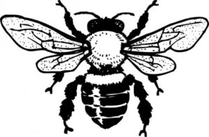 honey_bee_clip_art_18225