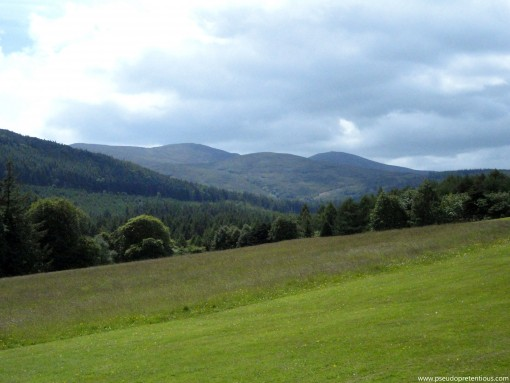 A view of the Mourne Mountains from Tollymore Forest Park