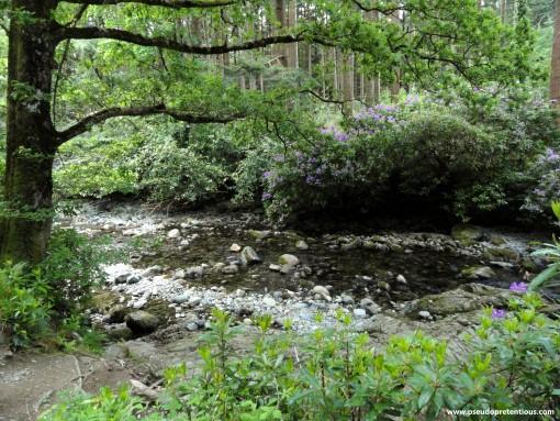 The Shimna River